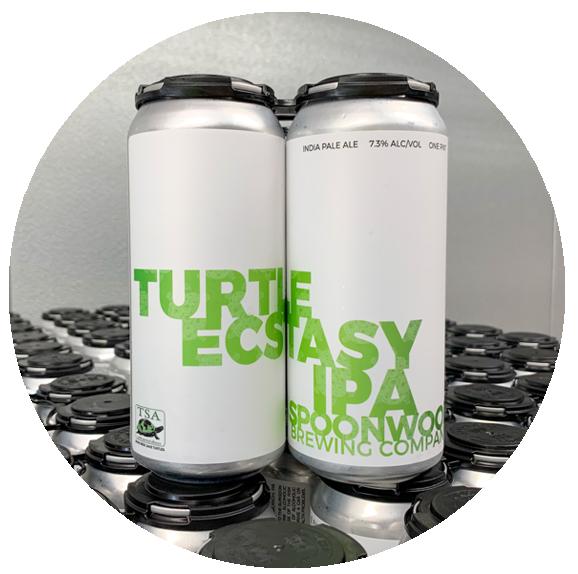 Turtle Ecstasy Image